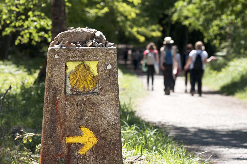 Vamos de peregrinaje a Santiago de Compostela